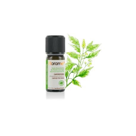 Camphrier bois sauvage - cinnamomum camphora - Huile essentielle de Florame, 10 ml