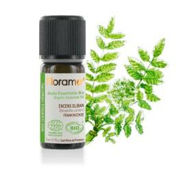 Encens oliban biologique - Huile essentielle BIO de Florame, 5 ml