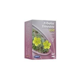 Tribulus Terrestris 650 de ORTHONAT Nutrition, 60 gélules