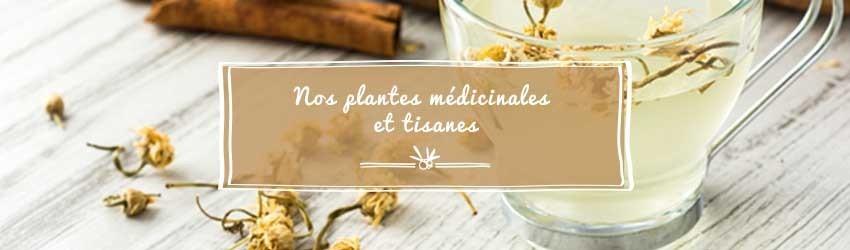 Plantes médicinales et Tisanes