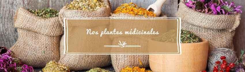 Nos plantes médicinales de A à Z