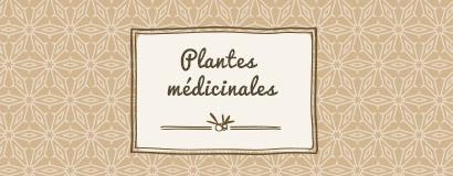 Plantes médicinales par vertus